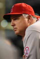 Mike Scioscia looks on from the dugout.jpg